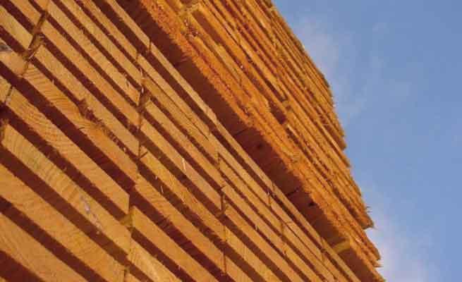 Odessa Holzhandel Holzhandel Deutschland